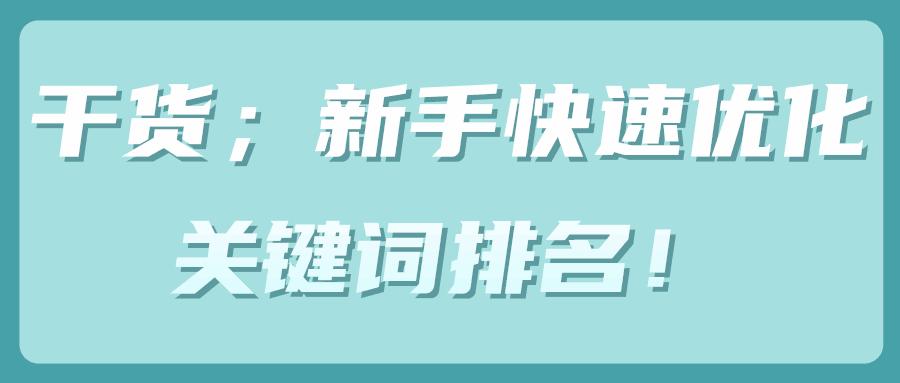 网赚新手快速优化关键词排名!【SEO视频教程】-福缘课堂