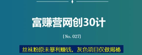 sw粉原w暴利赚钱,灰色项目仅做揭秘【富赚营网创30计027】