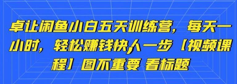 卓让闲鱼教程:新手0基础五天训练营,每天1小时,轻松赚钱【视频课程】